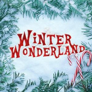 Winter Wonderland Manchester Promo Codes