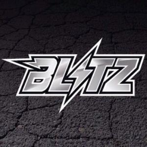 Project Blitz Promo Codes