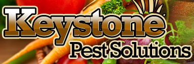 Keystone Pest Solutions Promo Codes
